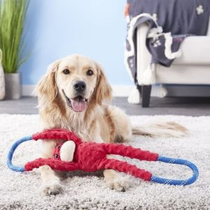 dog toys, dog games, tug of war