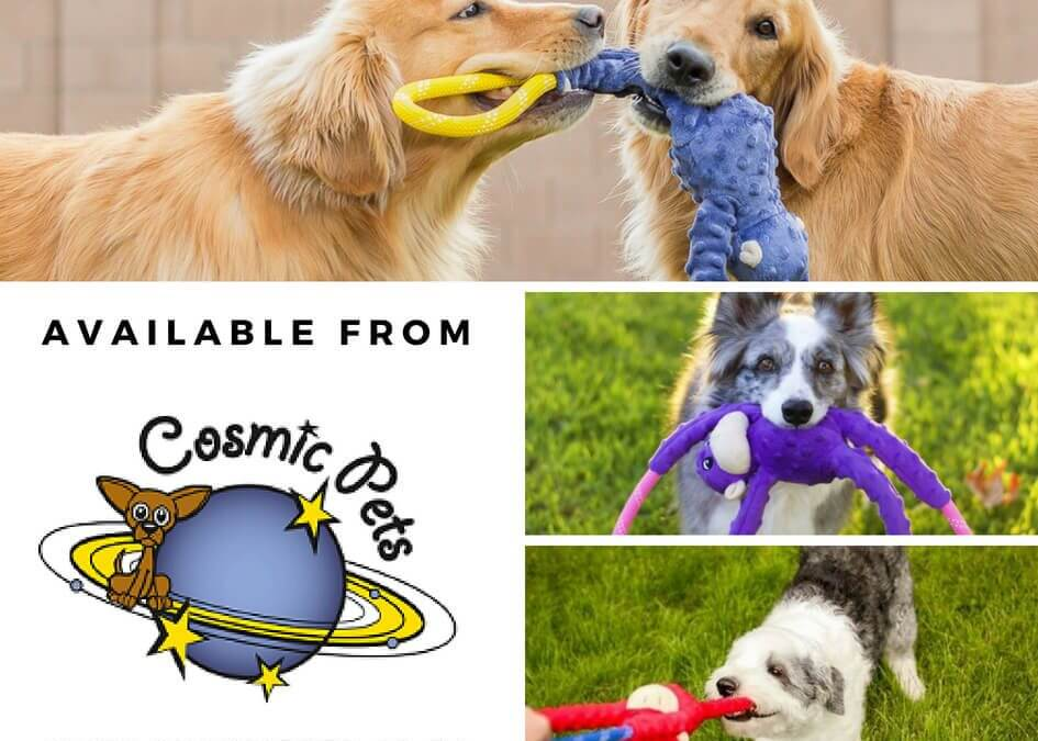 Dog rope toys and tug toys – fun all around.