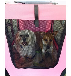 Dog carrier Dog crate