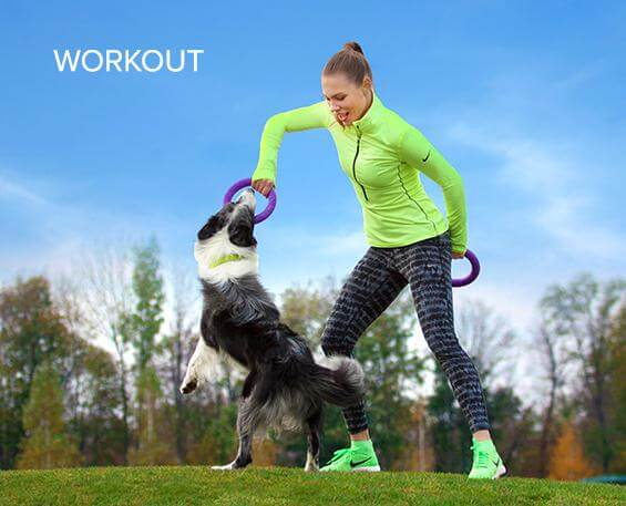 PULLER – Dog Fitness Tool